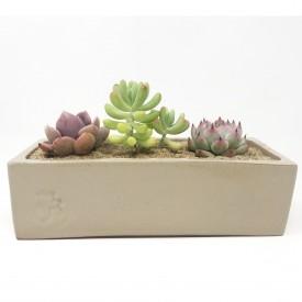 jardinière émaillée sable - 7 x 21 x 6 cm