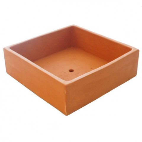 Coupe Terre cuite - Taille L (20 x 20 x 6)